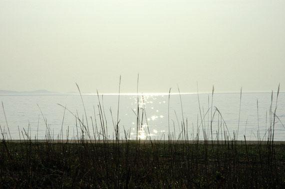 光る海(2010年)