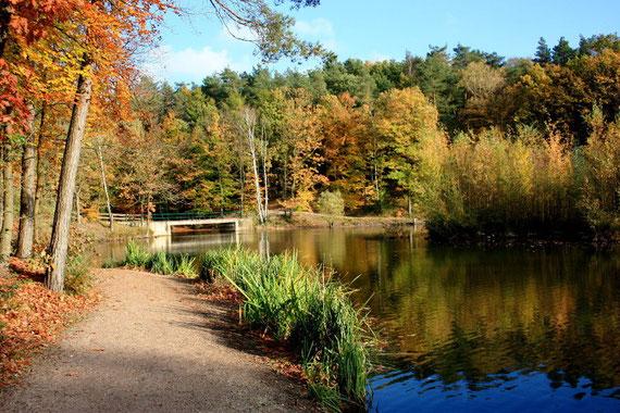 Lieht Stadtpark Elmshorn