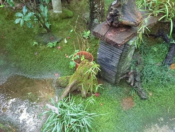 京都観光タクシー永田観光ツアー 苔寺