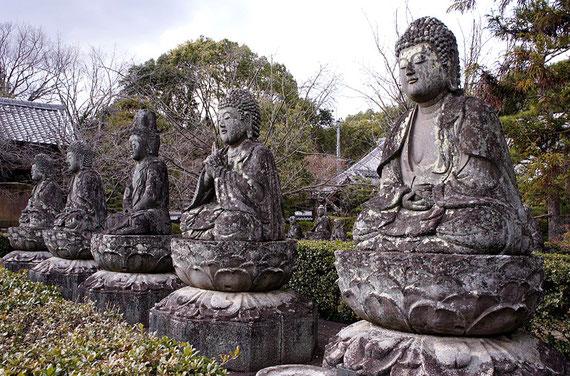 真言宗御室派の別格本山、「五智山蓮華寺」の五智如来像