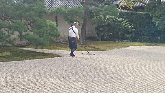 京都観光タクシーツアー 天龍寺