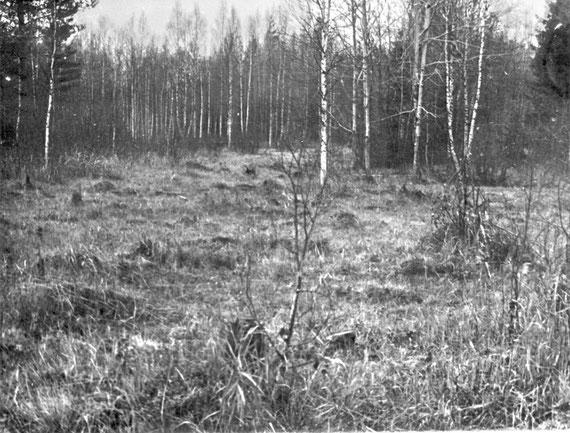 "Предполье ""линии Маннергейма"" на участке наступления 80 сд, справа от ж/д линии. Снимок от 25.10.1975 г."