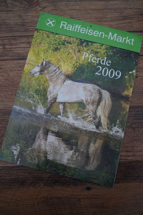 Pferdekalender 2009    Fotos & Layout   Ginsbach