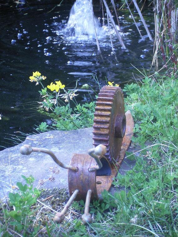 Schnecke am Teich
