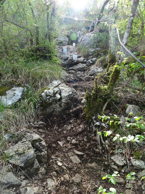 Eisentritte sind im steilen Gelände eingebaut