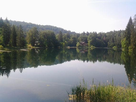 il bellissimo  lago di cei 920m