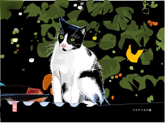 コスタリカの猫 2019/09/24制作