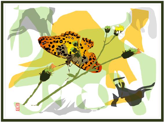 小栴檀草と蝶