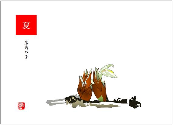 茗荷の子 俳画用 2018/07/04制作