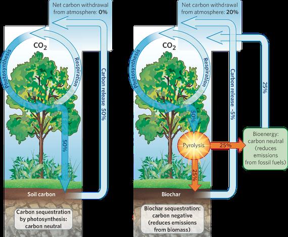 Esquema mostrant com l'ús de biochar (que es fabrica mitjançant la piròlisi) pot ser carboni-negatiu i ajudar a seqüestrar CO2 de l'atmosfera