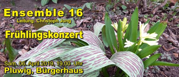 Ensemble 16, Leitung Christop Jung, Frühlingskonzert in Pluwig, Bürgerhaus, 6. April 2019, 19 Uhr