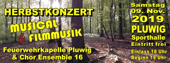 Sa. 09.11.2019 Herbstkonzert. Musical & Filmmusik   in Pluwig, Sporthalle. Foto: Theophil Schweicher