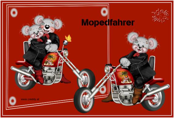 5.21 -Mopeds vorgegeben