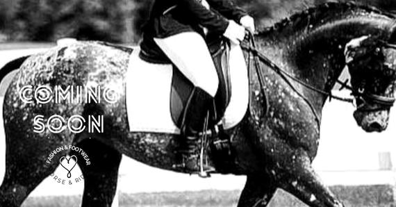 Appaloosa Old-Line | Appaloosa Old-Foundation Foundaloo(sa) | Appaloosa Sport Horse | Appaloosa Classic | By SIX C Appaloosa