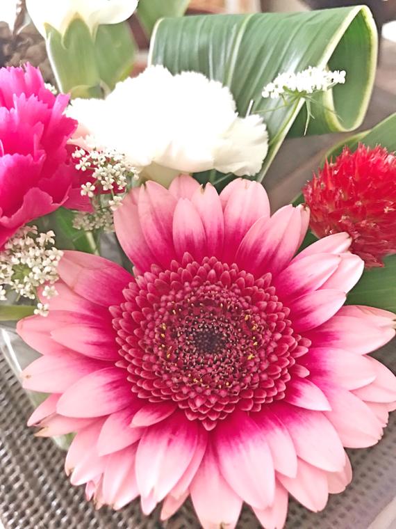 Kちゃんにもらったお花。