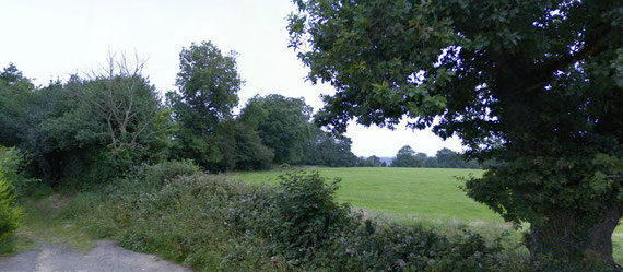Small scattered remnants of woodland remain, here at Crabmill Lane. Click the image to go Google Maps.
