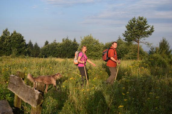Wanderer auf dem Velmerstot © GesUndTourismus Horn-Bad Meinberg GmbH
