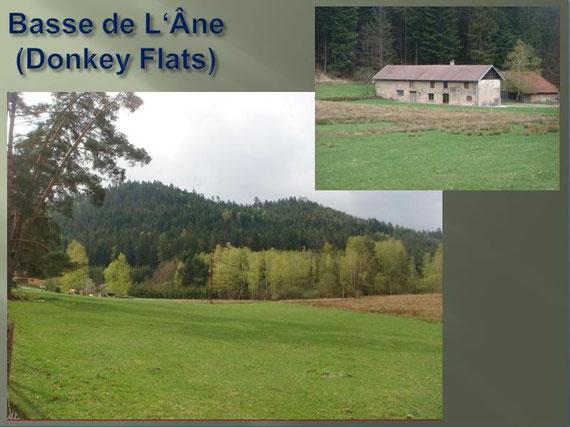 Donkey Flats