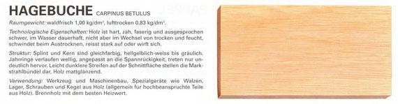 Hagebuche