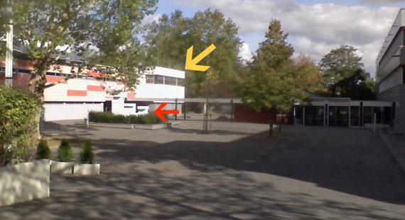 Gymnasium Gonsenheim