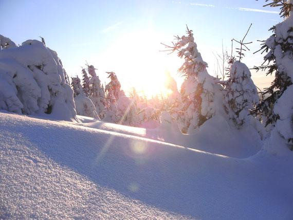 So schön kann eine Winterlandschaft ausehen