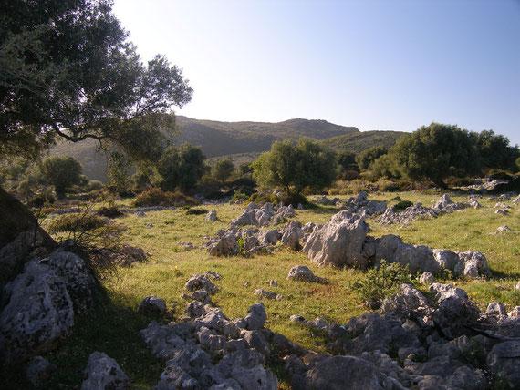 Ecotopia ist ein Naturpark