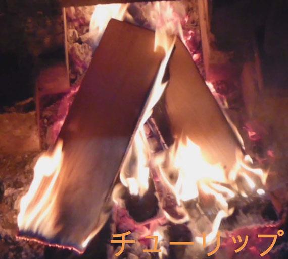 炙り 深夜黙々と行い 炎のアート チューリップを発見