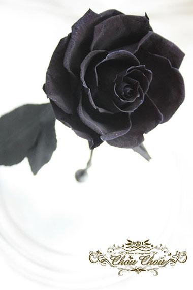 結婚祝い ウェディング プレゼント 黒いバラ ブラックローズ プリザーブドフラワー ガラスドーム  オーダーフラワー  シュシュ chouchou
