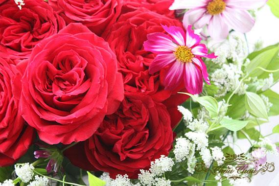 ディズニー  プロポーズ ディズニーランドホテル ダズンローズ  ハートの花束 赤薔薇 コスモス 誕生花 オーダーフラワー  シュシュ