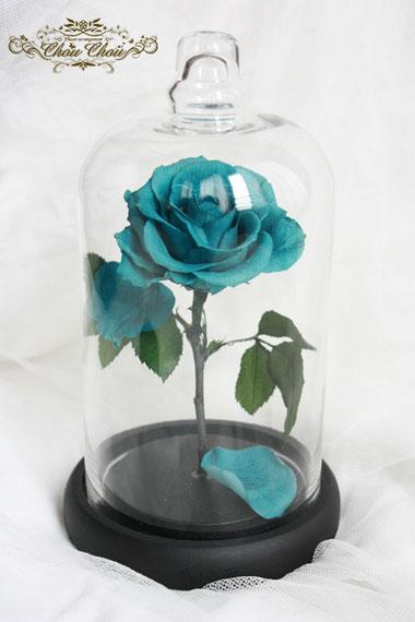 美女と野獣 バラ ガラスドーム ターコイズブルー