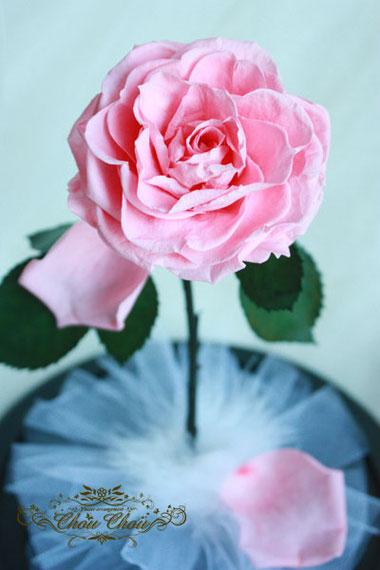 美女と野獣 薔薇 ガラスドーム ディズニー プロポーズ ピンク