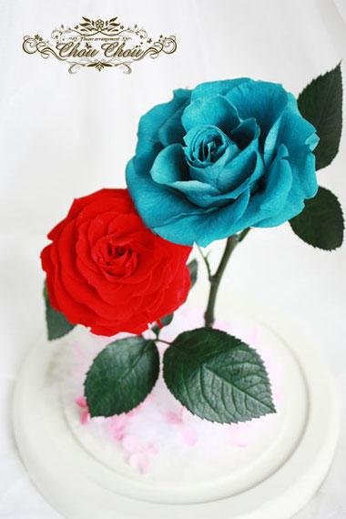 プロポーズ ディズニー ミラコスタ ガラスドーム プリザーブドフラワー 薔薇