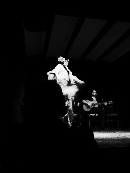 Flamenco - La Buleria/ Valencia 2016