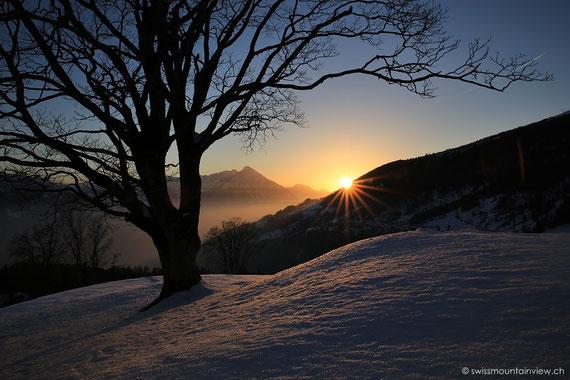 Beatenberg-Waldegg, Blick Richtung Niesen