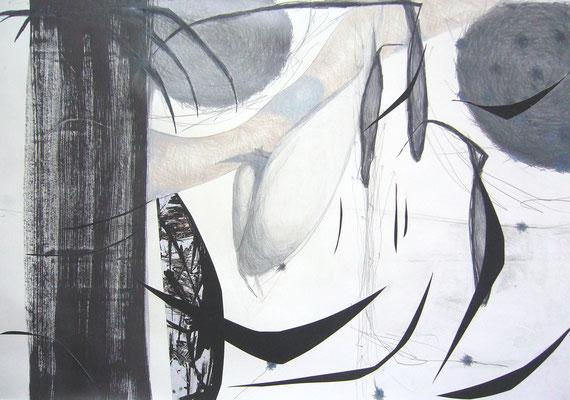 o.t., zeichnung, collage mit überzeichneten fototeilen, 100x70 cm, 2013