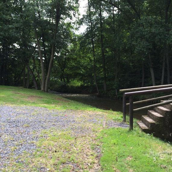 Badestelle und Steg - Weg in den Wald