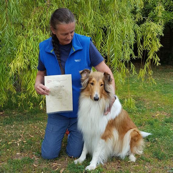 Xara vom Grafenhaus ( Van-M Merlin vom Grafenhaus/Van-M Light My Lamp) hat gestern die BH Prüfung erfolgreich abgelegt. Xara arbeitet sehr gerne auf dem Hundeplatz und ist immer eifrig bei der Sache.