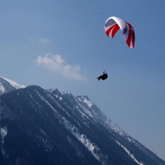 Gleitschirmflieger an der Hochplatte bei Marquartstein