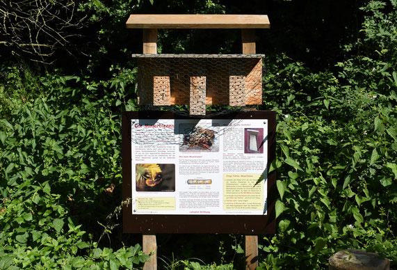"""Infotafel """"Die Mauerbienen"""" auf dem Lehrpfad Bothkamp"""