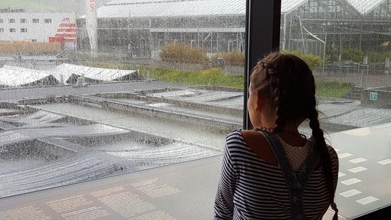 Regenwetter stört uns heute nicht