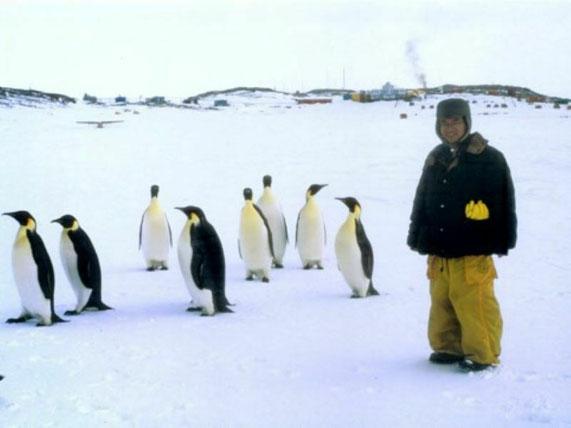 南極昭和基地。学生時代に南極越冬隊として1年間昭和基地に滞在して、オーロラを毎晩観測しました。時々ペンギンが基地を見学しにやってきます。これはコウテイペンギンです。