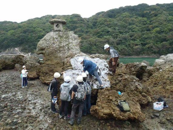 下田市の海岸で、津波石の調査。