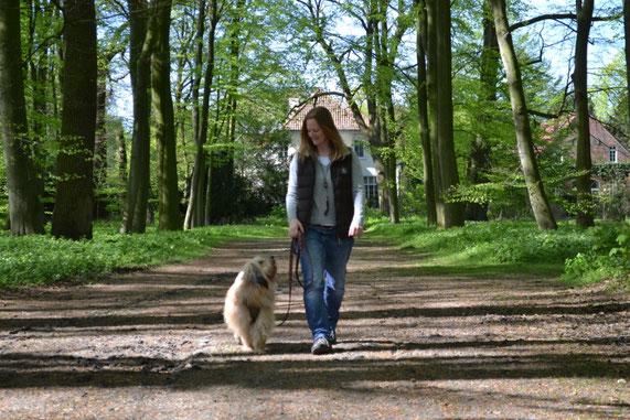 Hundetrainerin Meike Mosen mit Tibet-Terrier der Hundeschule MOMO - Hundeschule Bremen & Lilienthal