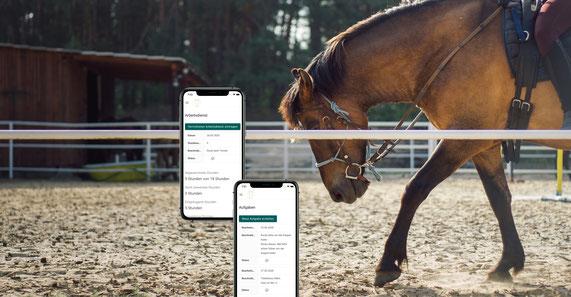 horse+, App, Reiterhof, Reitstall, Belegungspläne, Stallorganisation