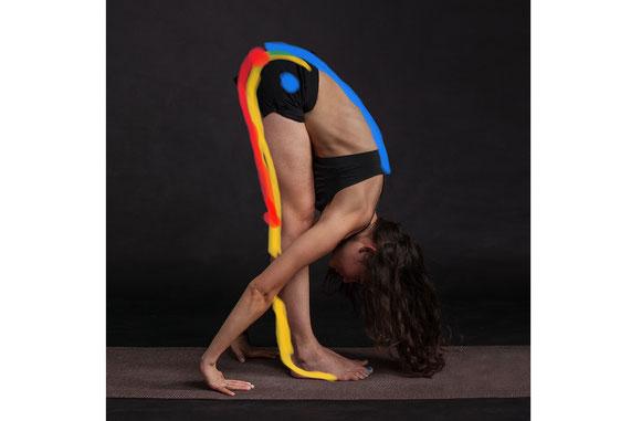 柔軟性 ストレッチ 柔らかい体