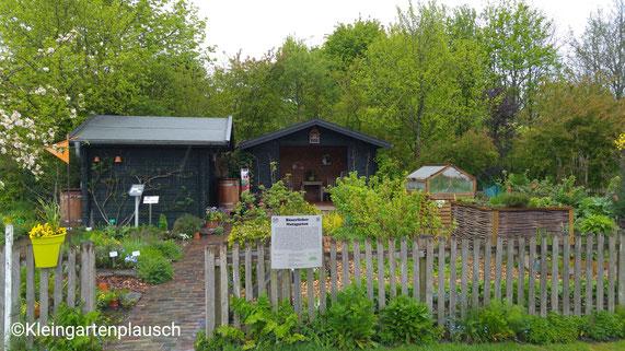 Ein Kleingarten, hurra, dachten wir, aber dann entpuppte es sich als Bauerngarten- auch schön ☺