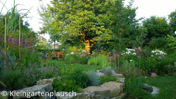 Blick aus dem Garten Richtung Weg ...