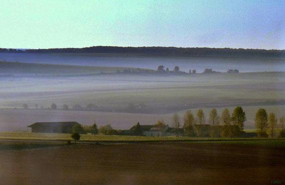Landschaft vom ICE aus (Fotograf: Reinhart Stoll)