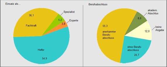 Einsatz- und Qualifikationsniveaus von Leiharbeitern 2017