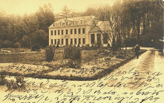 Das Botanische Institut